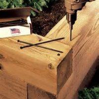 10 Inch Log Screw